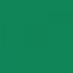 Plastic welding rod HDPE BCP171 signal green RAL 6032