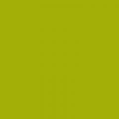 Kunststoffschweißdraht HDPE BCP171 Pantone 383 (RAL250-3)