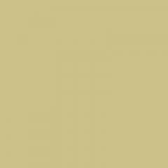 Kunststoffschweißdraht HDPE BCP171 grünbeige RAL 1000